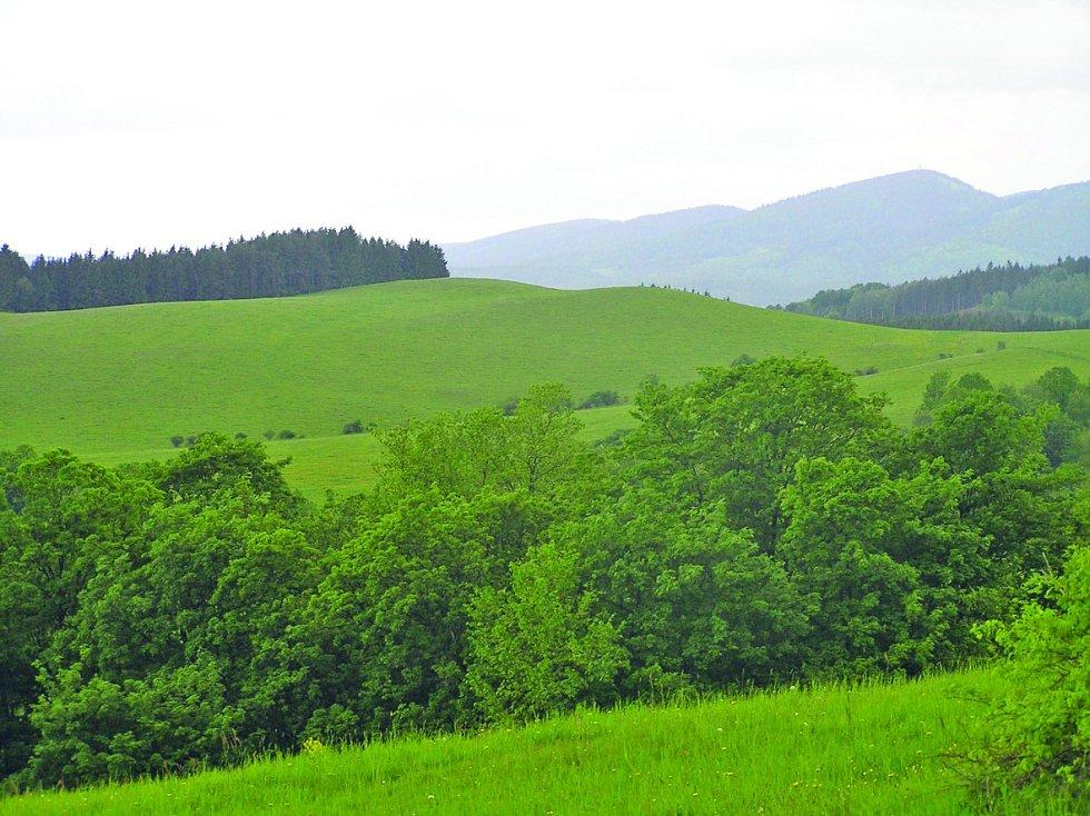 Javoří hory. Jejich hřeben je dlouhý sedmnáct kilometrů a tvoří přirozenou hranici s Polskem.
