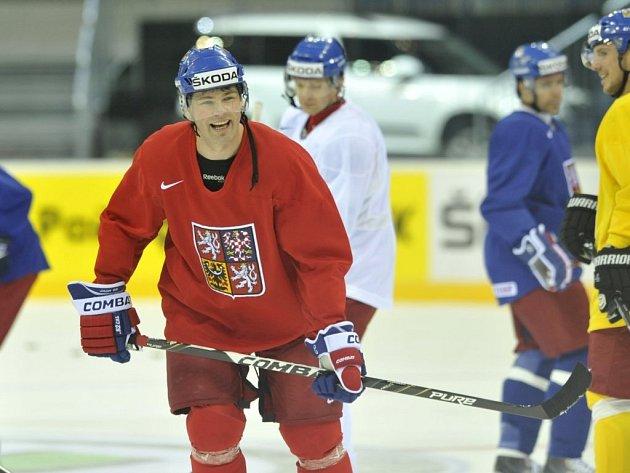 V nominaci hokejové reprezentace pro olympijský turnaj v Soči nechybí ani hvězdný útočník Jaromír Jágr.