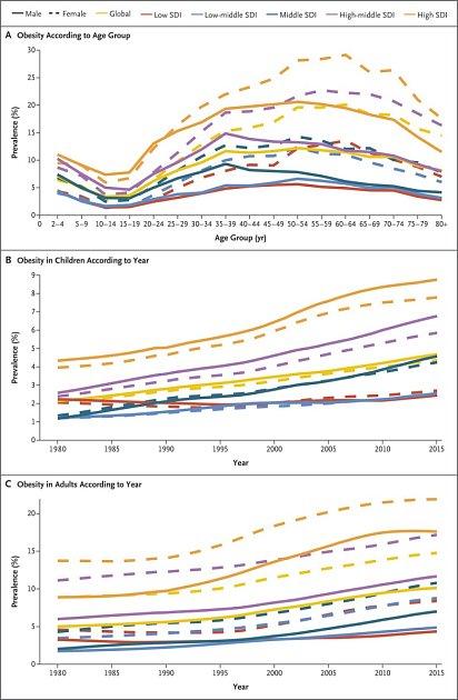Výzkum obezity
