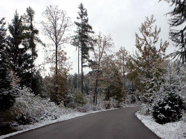 V Brně a jeho okolí napadl sníh. Za pár hodin roztál.
