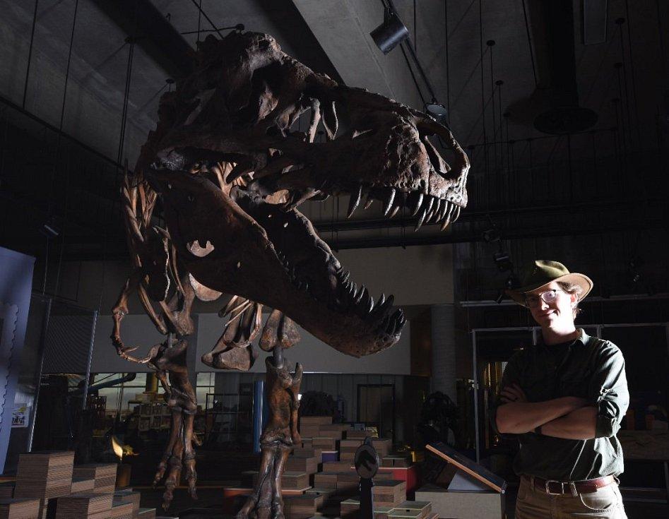 Tyrannosaurus Scotty a výzkumník Scott Persons