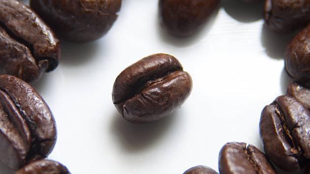 Kávová zrna. Ilustrační foto