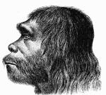Pravděpodobná podoba neandertálců