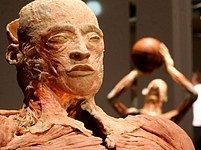 Výstava Bodies v pražské Lucerně
