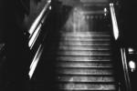 Slavný snímek Hnědé paní z Raynham Hall