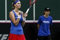 Petra Kvitová se raduje z vítězství nad Anastasií Pavljučenkovovou z Ruska ve finále Fed Cupu.