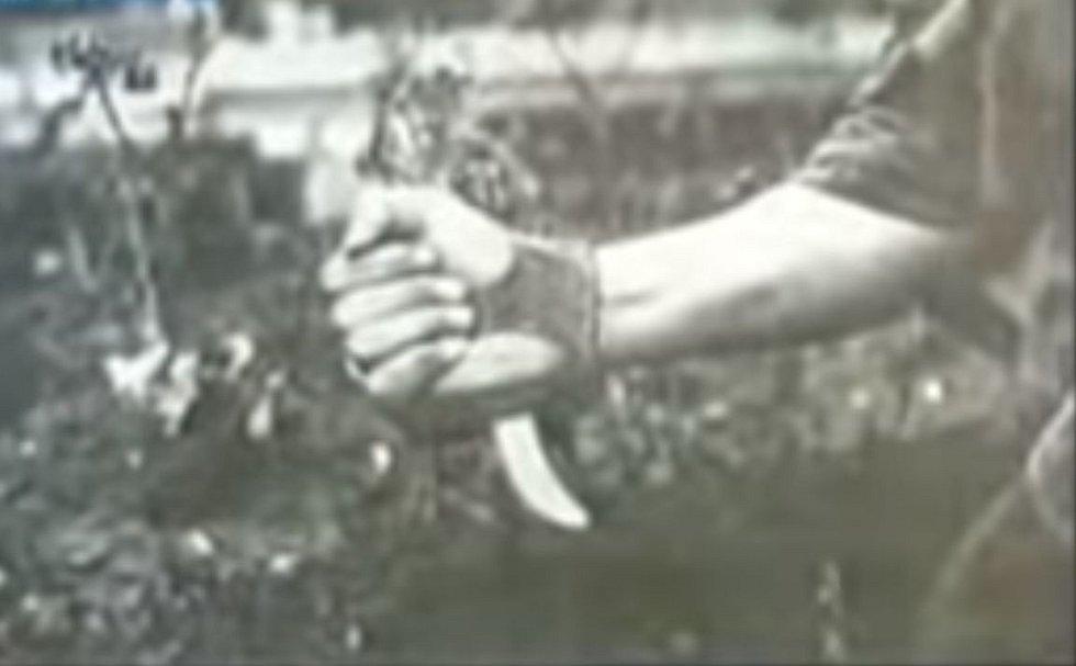 Chorvatský fašista a ustašovec Petar Brzica vraždil vězně speciálně upraveným nožem