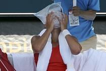 Barbora Strýcová se během zápasu v Sydney musela chladit ledem.