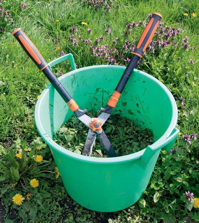 Když kopřivy nastříháme, hnojivo zkvasí dříve.