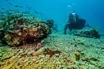 Mořská scenérie, ostrov Veruda Chorvatsko. Lukáš Vejřík, Nové Sedlo
