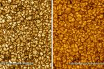 Ultradetailní záběry Slunce pořízené teleskopem