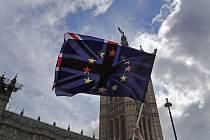 Protest zastánců EU před britským parlamentem v Londýně.