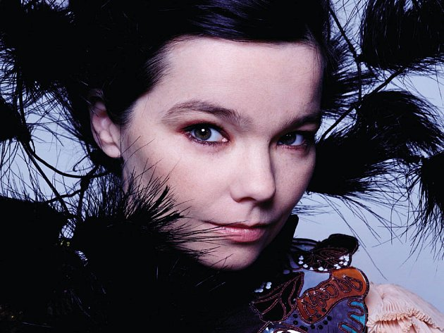 Islandská zpěvačka Björk.