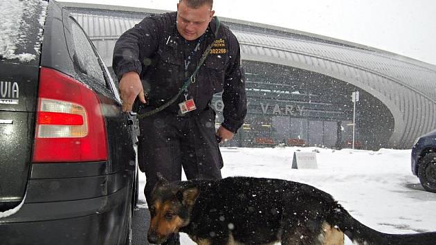 V souvislosti s pondělním výbuchem na moskevském letišti Domodědovo zvýšilo bezpečností opatření také letiště v Karlových Varech. V úterý 25. ledna 2011 tam byli přítomni policista se psem, odstřelovač i pyrotechnik.