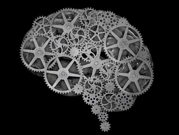 Američtí vědci vyvinuli implantát, díky kterému zlepšili funkci mozku pokusných opic.