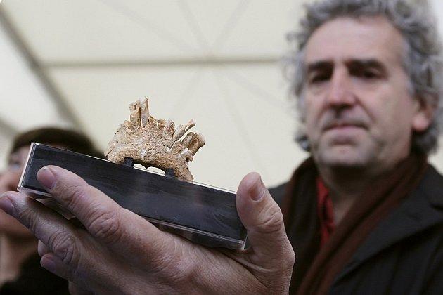 Španělský paleontolog Juan Luis Arsuaga drží kus čelisti patrně nejstaršího předchůdce člověka v Evropě, starý zhruba 1,1 až 1,2 milionu let.