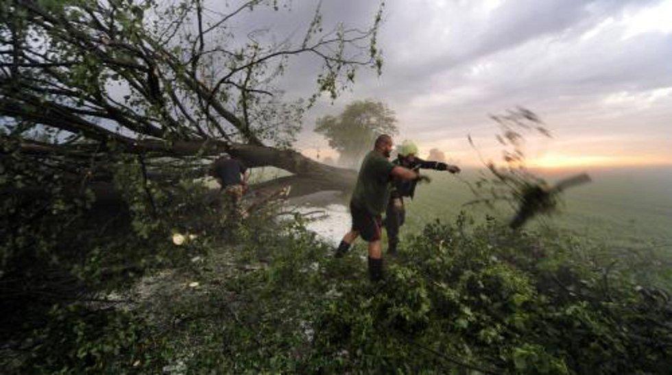 Větrná smršť - Lidé odklízejí stromy, které zlámala větrná smršť s přívalovým lijákem.