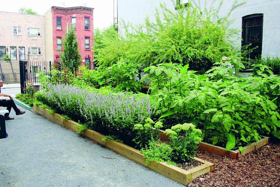 Zelenají se také vnitrobloky i dvorky.