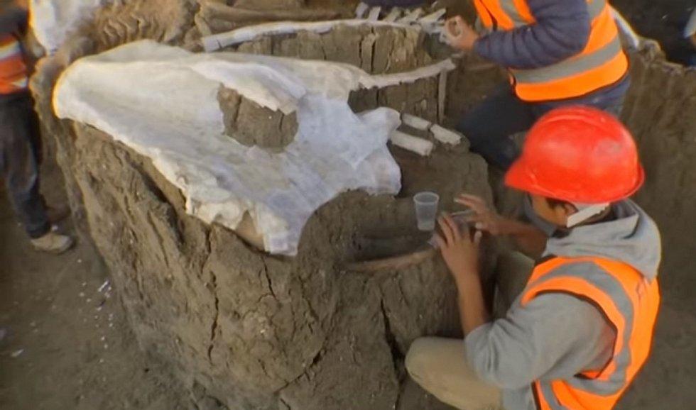 Bohatost naleziště je možná dána tím, že zde lidé zaháněli mamuty do bahna, v němž je topili