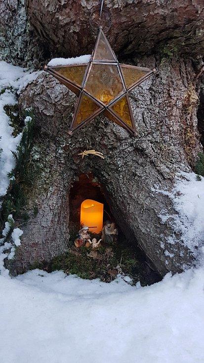 Malé jesličky pod kořeny stromu ve Frastanzu v Rakousku