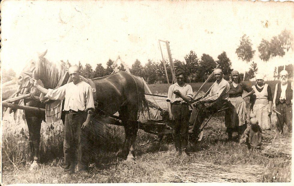 Dolečkovi jako hospodáři v osadě Moldavy Májovka v rovenské oblasti na Volyni. Po zabrání Volyně SSSR je Sověti je označili za kulaky, zabrali jim půdu a sebrali dobytek
