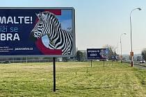 Chránit životy chodců na silnicích a ulicích Pardubic a Kutné Hory, to je cíl kampaně Pozor, zebra!.