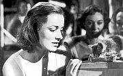 V KLECI. Eleanor Parker byla za výkon v Cromwellově dramatu nominována na Oscara.