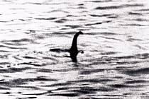 Jedna z legendárních  fotek lochnesské příšery z roku 1934 je ve skutečnosti padělek. Její autor přidělal na model ponorky  vyřezávanou hlavu plaza.