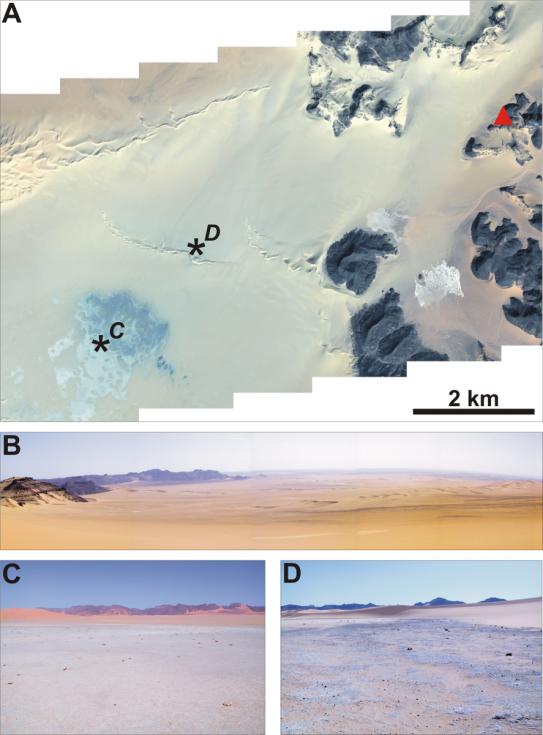 Podstatnou částí jídelníčku pravěkých lidí obývajících před deseti tisíci let Saharu byly ryby. Pak se ale tamější podnebí proměnilo