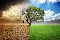 Globální oteplování. Ilustrační snímek