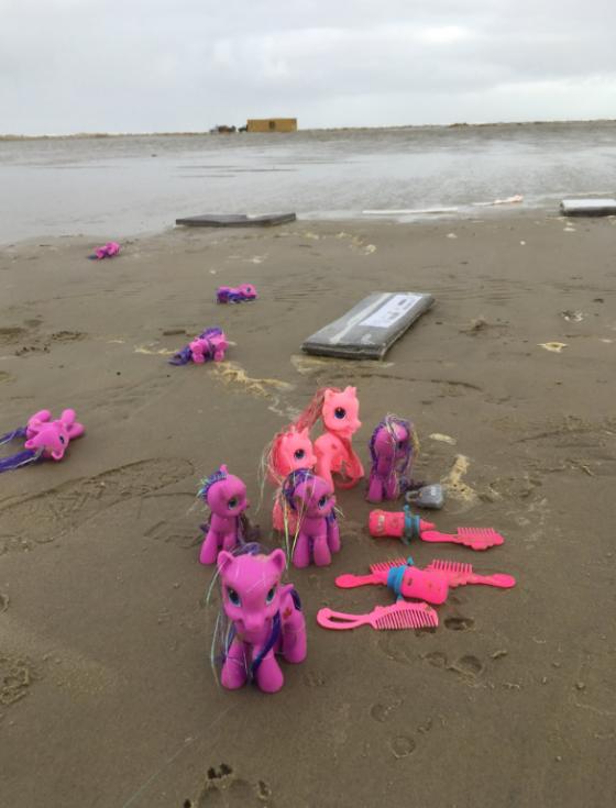 Mezi vyplavenými předměty jsou i hračky.
