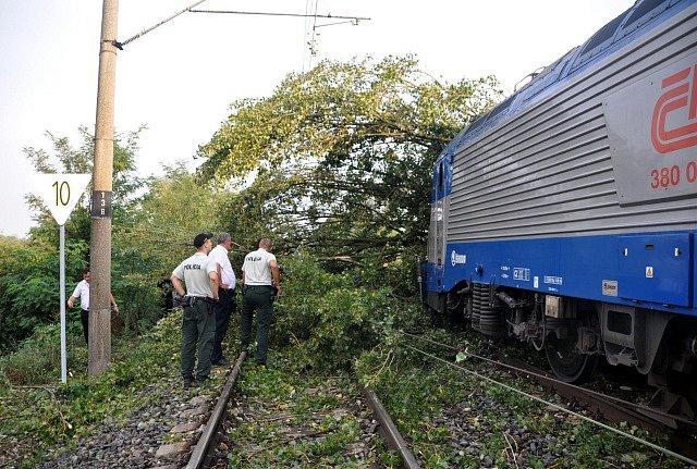Padlý strom způsobil několikahodinové zpoždění dálkových vlaků