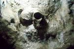 Replika neandertálské lebky, nalezené v jeskyni Svatého Michaela na Gibraltaru