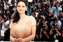 FRANCOUZSKÁ HVĚZDA. Marion Cotillardová (na snímku), kterou jsme naposled viděli jako půvabnou Adrianu v Allenově Půlnoci v Paříži, představila v soutěži v Cannes film Sněť a kost.