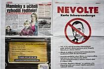 Lživý inzerát proti Karlu Schwarzenbergovi, který si zadal v deníku Blesk pražský advokát Vladimír Zavadil. Inzerát vyšel 25. ledna 2013 v období probíhající předvolební kampaně na úřad prezidenta České republiky.