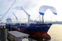 Plachetnice Beluga. Společnost počítá, že plachetnicemi uspoří desítky procent provozních nákladů.