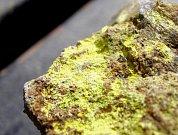 Minerál s obsahem radioaktivního uranu - Ilustrační foto