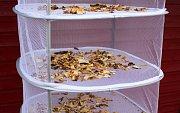 Závěsné síto na sušení hub a bylinek