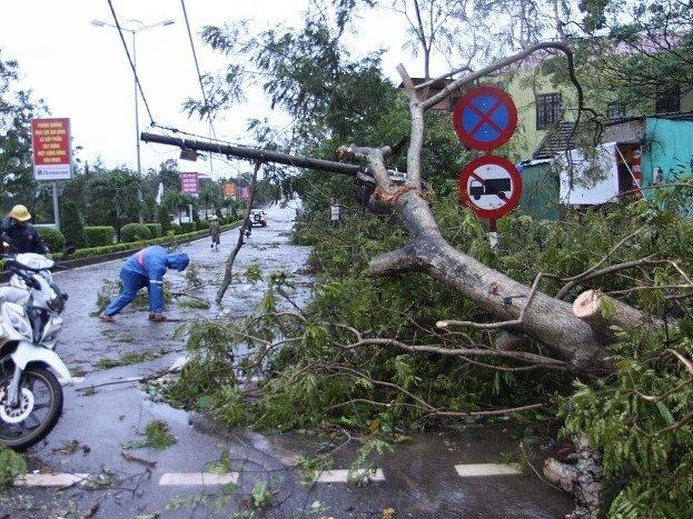 Bouře Wutip poničila ve Vietnamu 250.000 domů