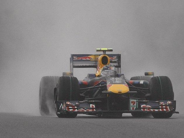 Německý pilot stáje Red Bull Sebastian Vettel byl součástí vítězného týmu.