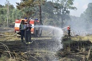 Požár lesa u Bzence.