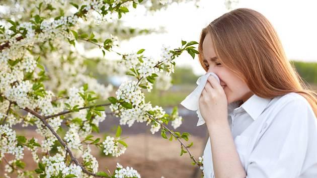 Alergie je do značné míry dědičně podmíněná, ale významnou roli nepochybně hrají i vlivy prostředí, a může se projevovat velmirůznou intenzitou a rychlostí rozvoje akutních potíží.