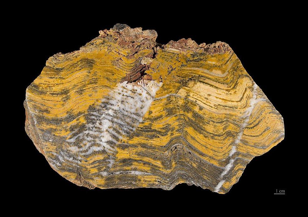 Stromatolit z australské oblasti Pilbara. Tyto útvary vytvořily během řady let rohože sinic, vyskytujících se v mělkých, hlavně mořských vodách