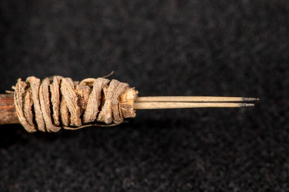 Tetovací nástroj objevený v zapomenuté krabici univerzitního archivu