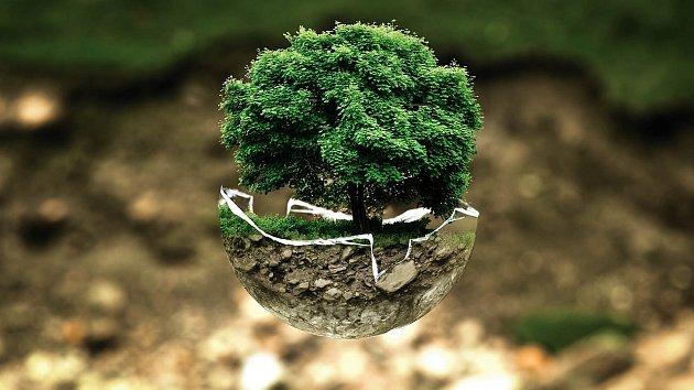 Zelená pro Evropu
