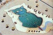 Bazén pro milovníky koček