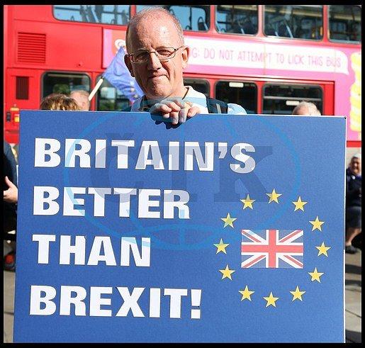 Odpůrce odpojení Velké Británie od Evropské unie.