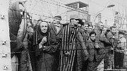 Přeživší vězni čekají na osvobození