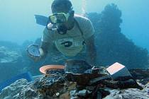 Potápěč - ilustrační foto