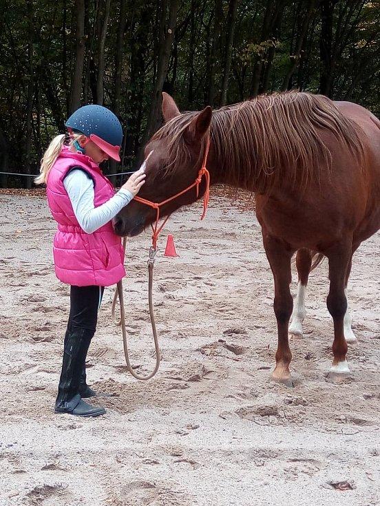 Kontakt s koňmi, takzvaná hiporehabilitace, může pomoci pacientům s postcovidovým syndromem.